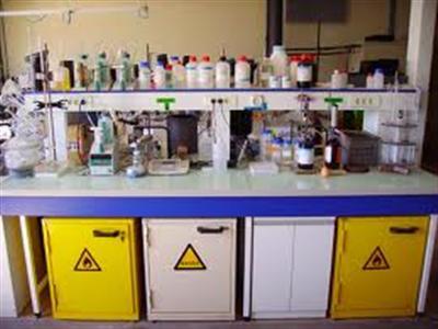 Balaji x-ray & laboratory